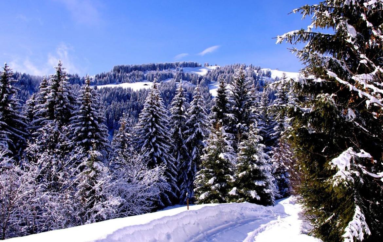 Kings-avenue-méribel-snow-sauna-jacuzzi-hammam-childfriendly-parking-fireplace-ski-in-helipad-area-méribel-014-3