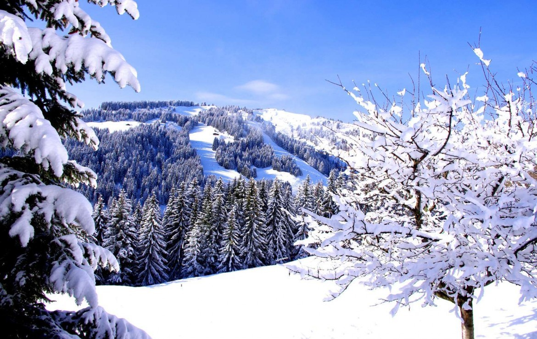 Kings-avenue-méribel-snow-sauna-jacuzzi-hammam-childfriendly-parking-fireplace-ski-in-helipad-area-méribel-014-4